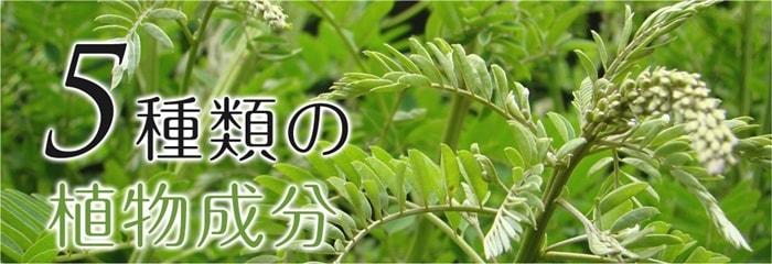 アットベリーは、5種類の植物成分をバランス良く配合