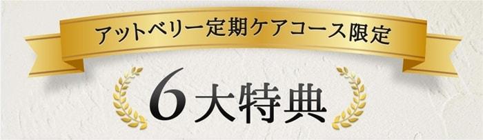 定期コース6つの特典+α