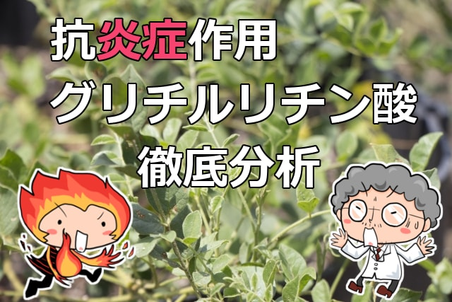 【お肌の炎症】グリチルリチン酸2K(甘草)徹底解説