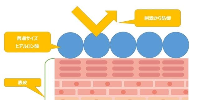 トラネキサム酸Naの分子量と用途